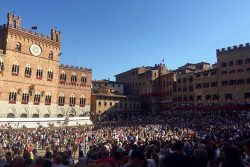Il Palio: More than a Horse Race